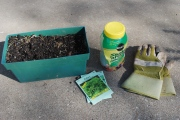 Gardening with kids in the winter