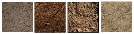 soil lesson
