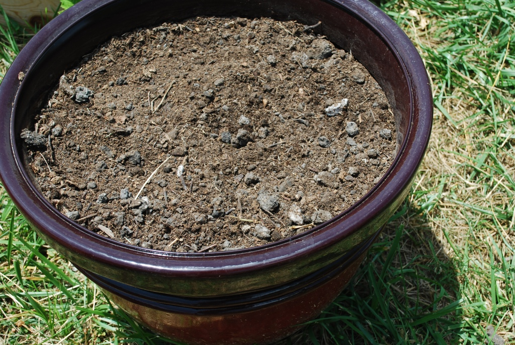 Super Simple Soil Experiment