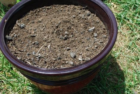 Soil Science experiment