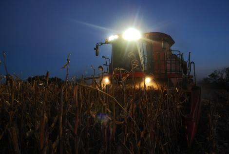 Harvest Photographs