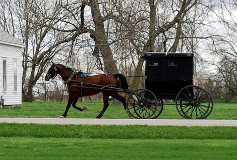 A day in Amish country, Jamesport, Mo {DaddysTractor.com}