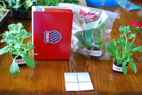 Plant Thematic unit with activities, lapbooks, centers, and printables  {DaddysTractor.com}