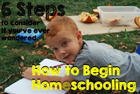 6 Steps to consider if you've ever wondered about homeschooling  {DaddysTractor.com}