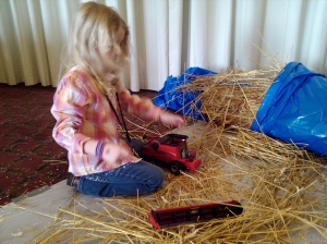 The Wheat Doll, a farm lesson plan