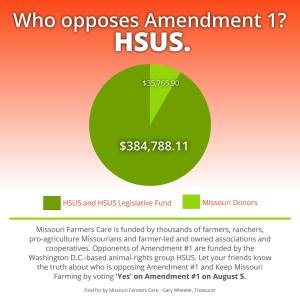 Vote Yes on Missouri Constitutional Amendment 1