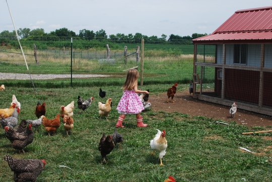 What is the Big Deal with Sustainability?  How do we leave our farms to the next generation?  {DaddysTractor.com}