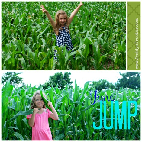 These pics were taken 8 days apart!  Corn seems to jump out of the ground in June!