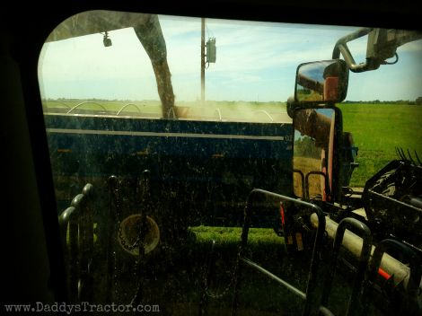 Wheat harvest-- pictures from the combine's seat.