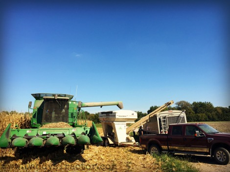 There is so much to harvest! Here a farmer calibrates his combine's monitor for accurate data.