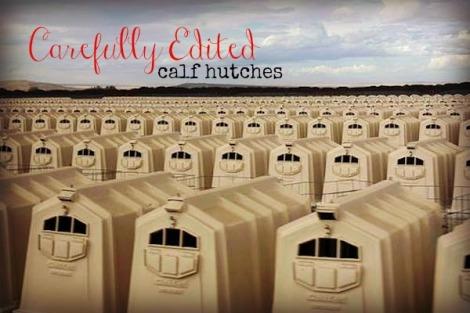 calf hutch